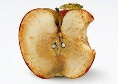 Apple é processada pela DECO devido ao batterygate nos iPhone