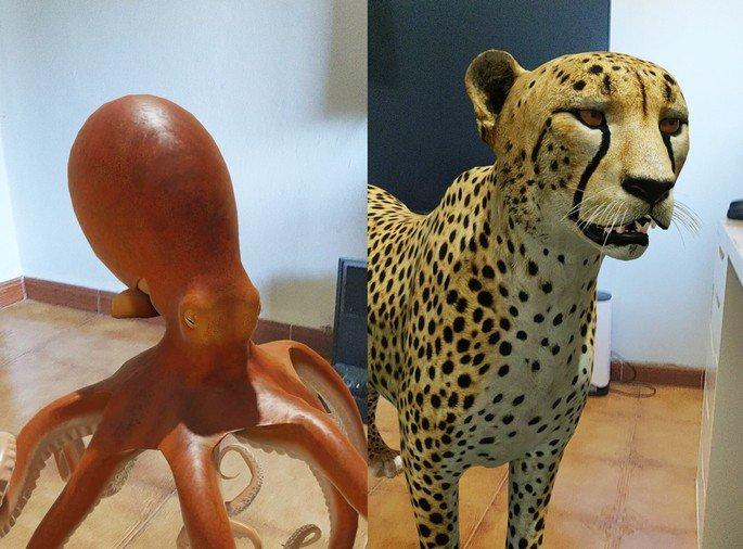lista animais 3D pesquisa google