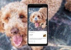 Câmara MIUI finalmente recebe integração do Google Lens