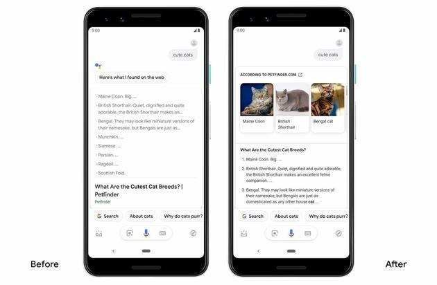 google assistant pesquisa