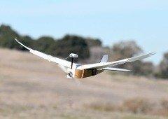 Miniaviões com design inspirado em pássaros conseguem voar durante mais tempo