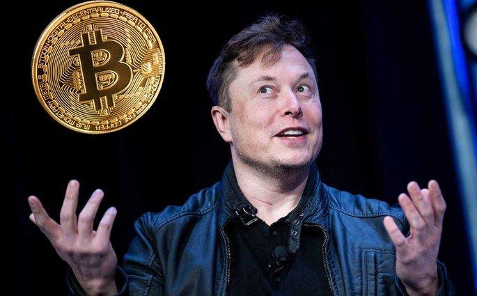 Elon Musk criptomoedas