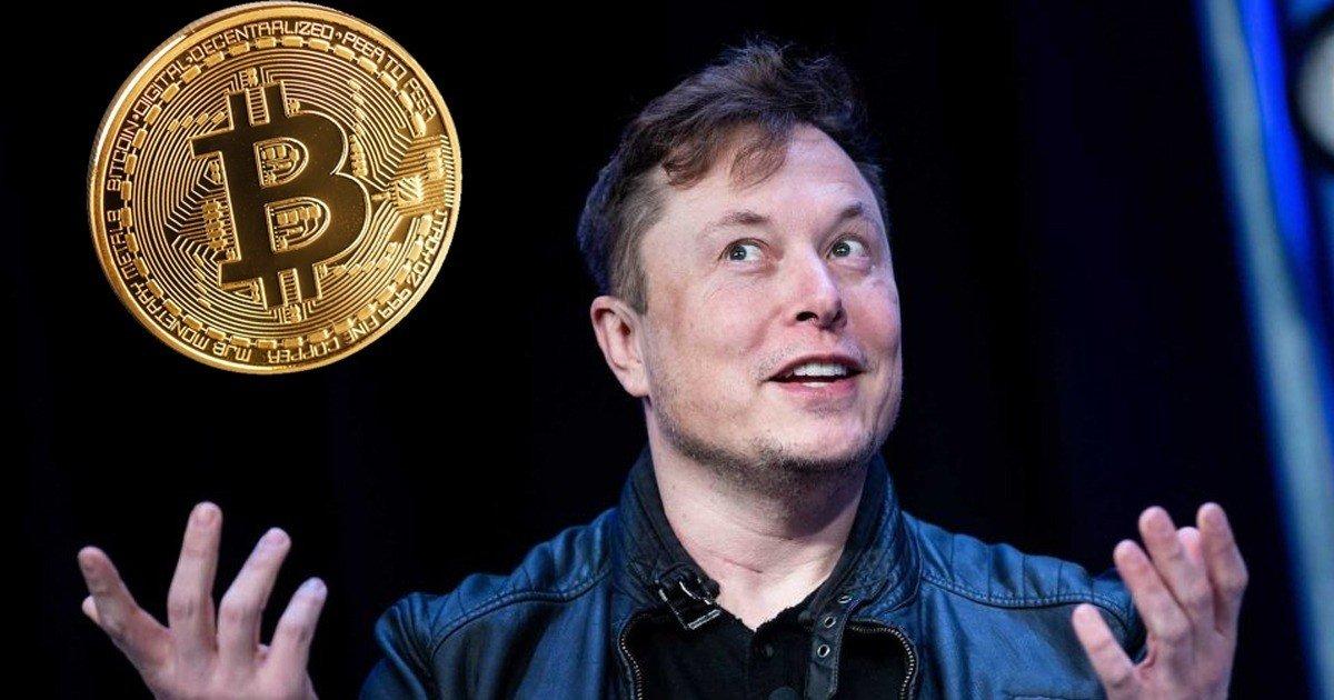 Elon Musk revela quanto Bitcoin tem! E não vais acreditar ...