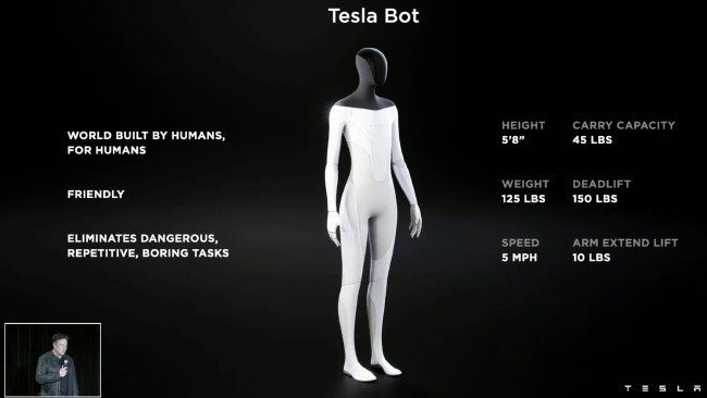 Tesla Bot