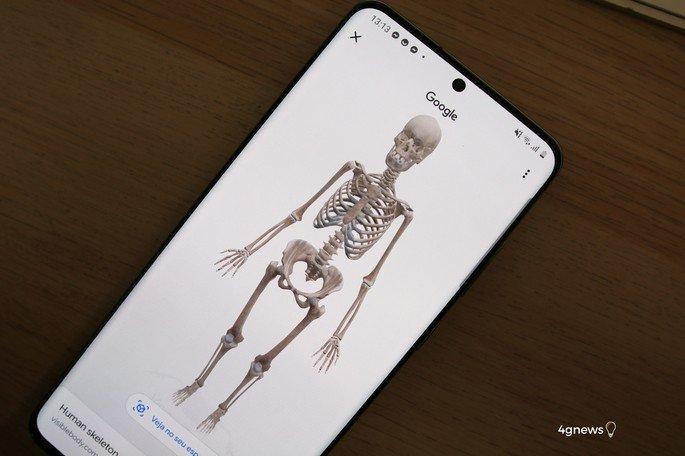 Esqueleto 3D pesquisa Gogole Google Chrome Animais 3D
