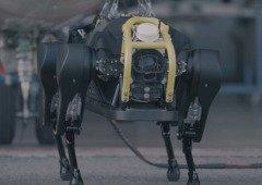 Este cão-robô conseguiu puxar um avião de 3 toneladas