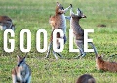 Google paga aos órgãos de comunicação social na Austrália e acalma disputas