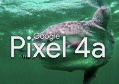 Google Pixel 4a vai chegar sem uma característica muito procurada em 2020