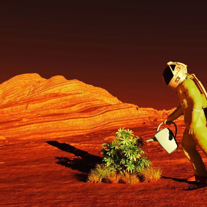 Habitável Marte Elon Musk