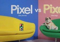 Nova publicidade da Google coloca o seu smartphone em comparação com um PUG (vídeo)