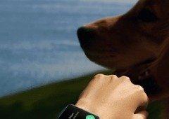 Oppo Watch 2: design revelado antes do tempo não esconde a inspiração
