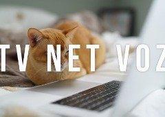 Os pacotes TV Net Voz mais baratos em 2021