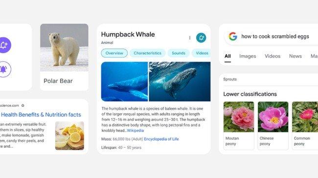 Pesquisa Google mobile