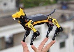 Petoi Bittle é a versão brinquedo do cão robô da Boston Dynamics e custa apenas €205!