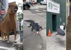 A Realidade Aumentada chegou à Google com animais em 3D