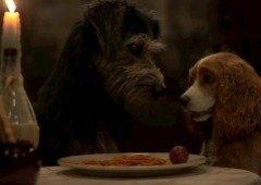 Remake do clássico 'A Dama e o Vagabundo' vai utilizar mistura de CGI com cães reais (vídeo)