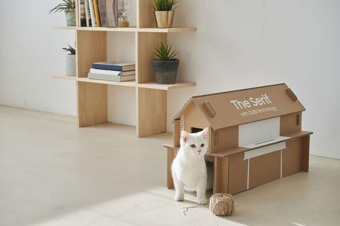 Samsung casa gato