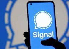 Signal regista crescimento impressionante e ameaça o domínio da WhatsApp