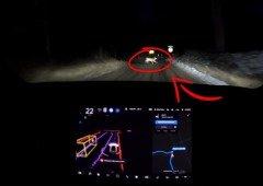 Tesla AutoPilot: condução autónoma evita acidente com veado e funciona sem luzes!