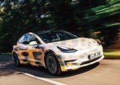 Tesla inspira-se nas chitas para melhorar o arranque dos carros! (vê o vídeo)