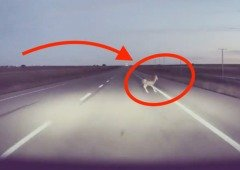 Tesla: vídeo mostra piloto automático a desviar-se de forma agressiva para evitar acidente