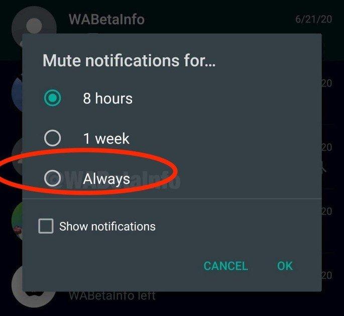 WhatsApp novidade grupos