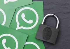 WhatsApp beta para Android recebe finalmente desejada medida de segurança!