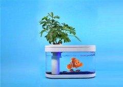 Xiaomi lançou o aquário que vais querer ter no teu quarto! E funciona com Power Bank!