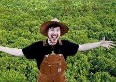 YouTubers já angariaram mais de 10 milhões de dólares para plantar árvores
